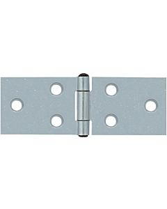 AXA klepscharnier 30 x 80 mm verz.