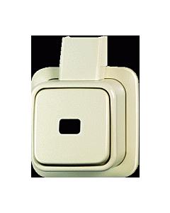 B-J Opbouw + plaat 1-p. wip-impulsdrukker maak zonder symbool creme