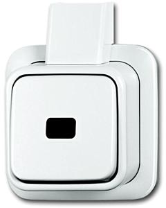 B-J Opbouw + plaat 1-p. wip-impulsdrukker maak zonder symbool alpin